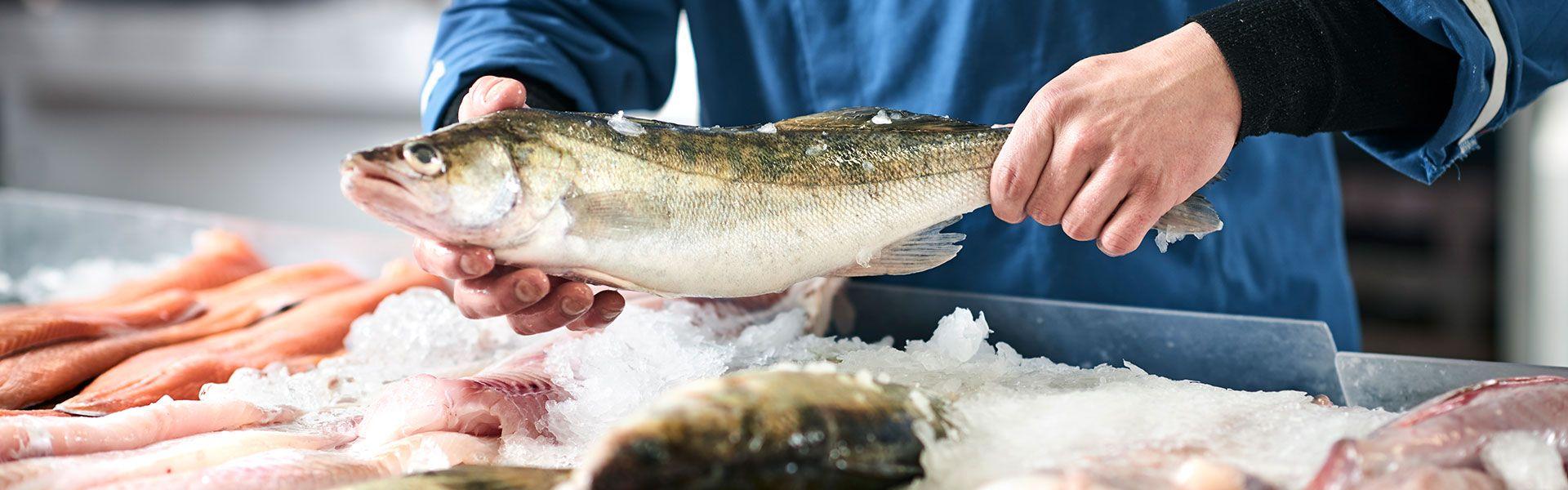 Clausens Fiskehandel